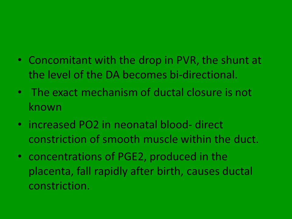 Concomitant with the drop in PVR, the shunt at the level of the DA becomes bi-directional.