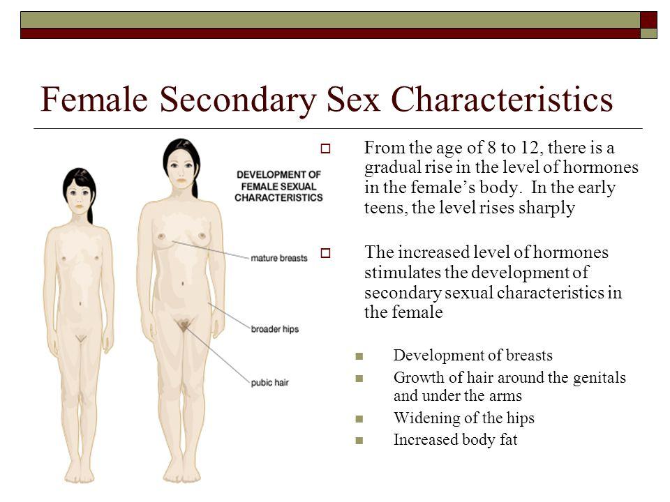 Female Secondary Sex Characteristics
