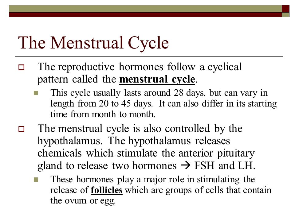 The Menstrual Cycle The reproductive hormones follow a cyclical pattern called the menstrual cycle.
