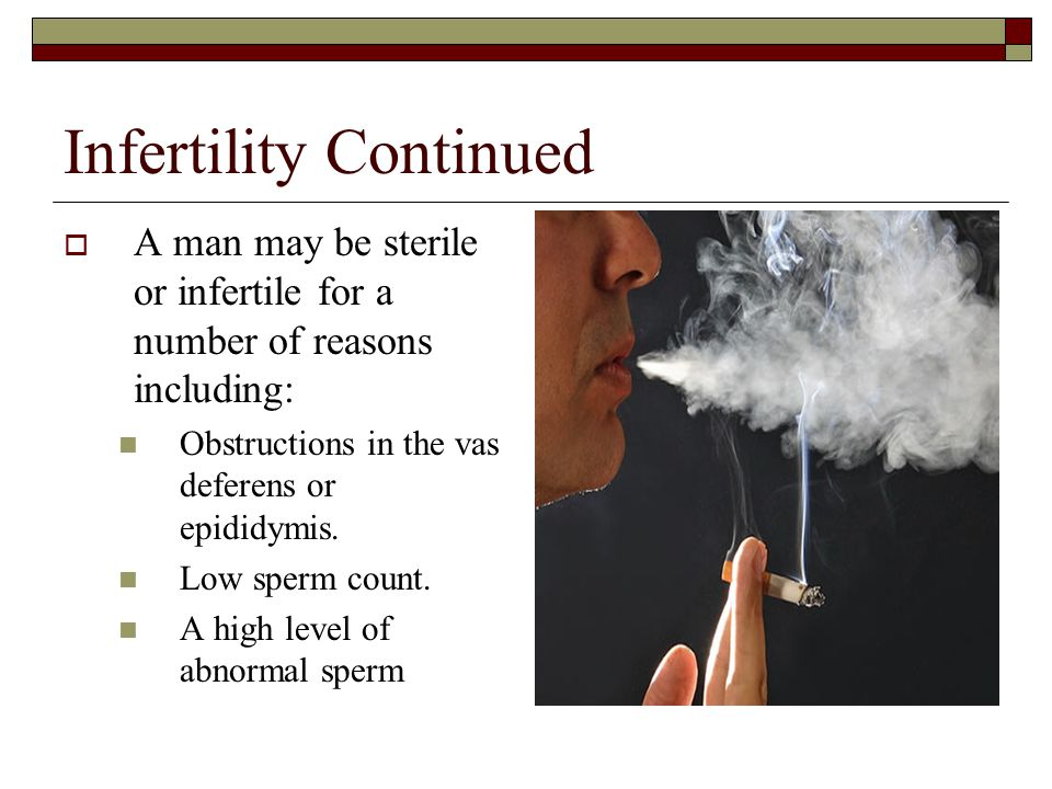 Infertility Continued
