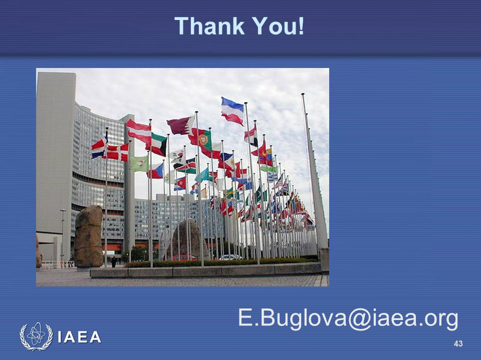 Thank You! E.Buglova@iaea.org