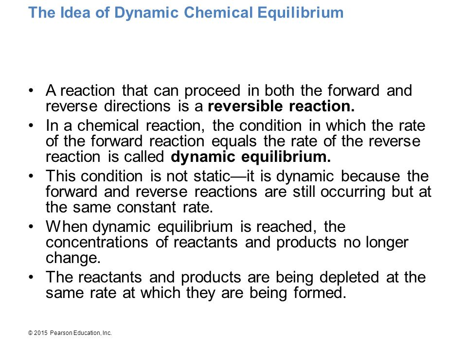 The Idea of Dynamic Chemical Equilibrium