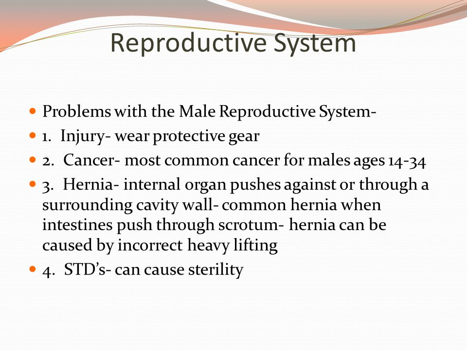 Reproductive System Problems with the Male Reproductive System-
