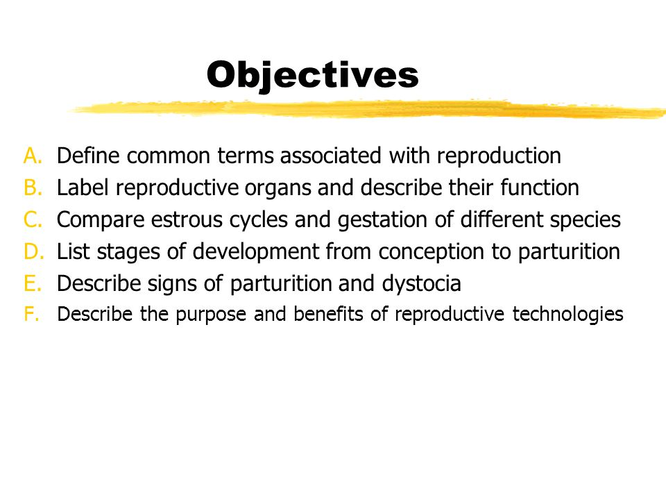 Objectives Define common terms associated with reproduction