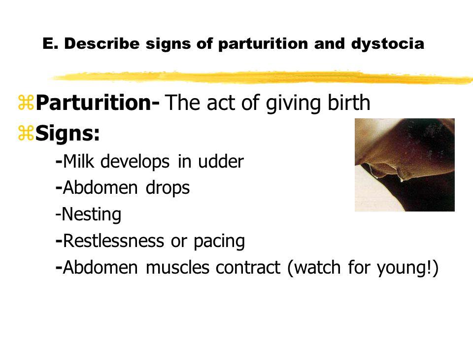 E. Describe signs of parturition and dystocia