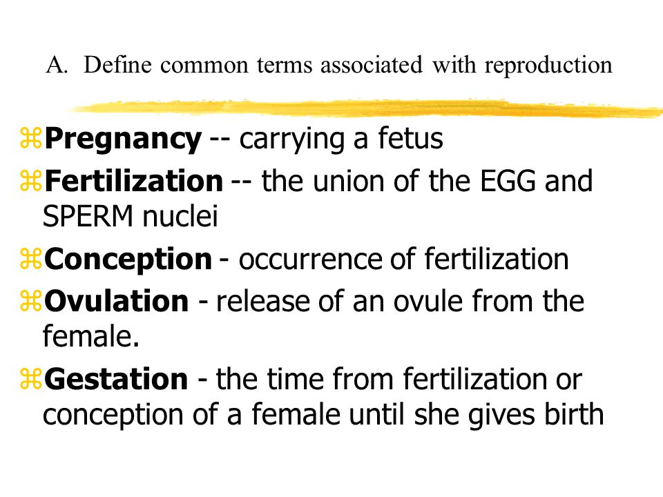 A. Define common terms associated with reproduction
