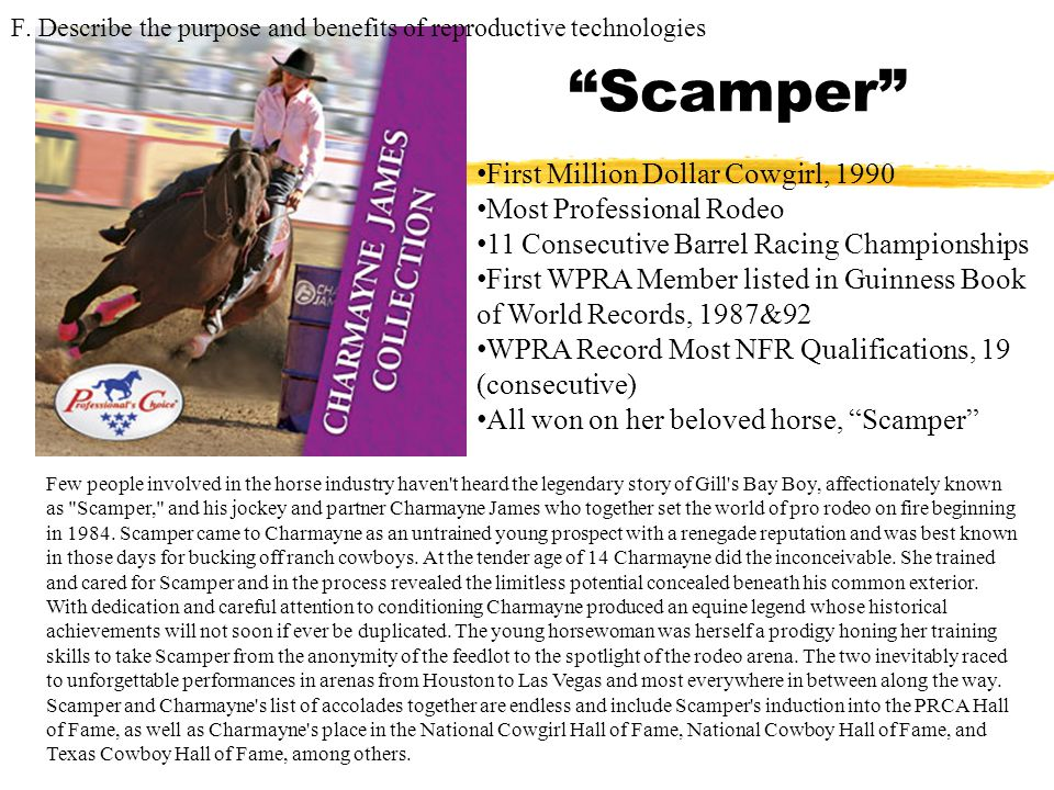 Scamper First Million Dollar Cowgirl, 1990 Most Professional Rodeo