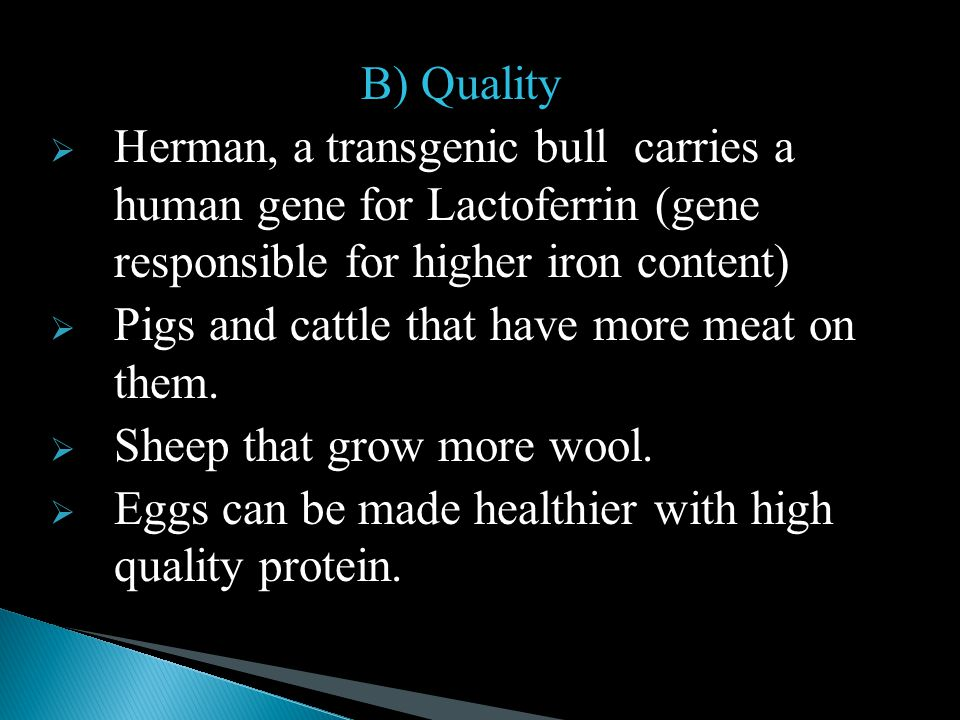 B) Quality Herman, a transgenic bull carries a human gene for Lactoferrin (gene responsible for higher iron content)