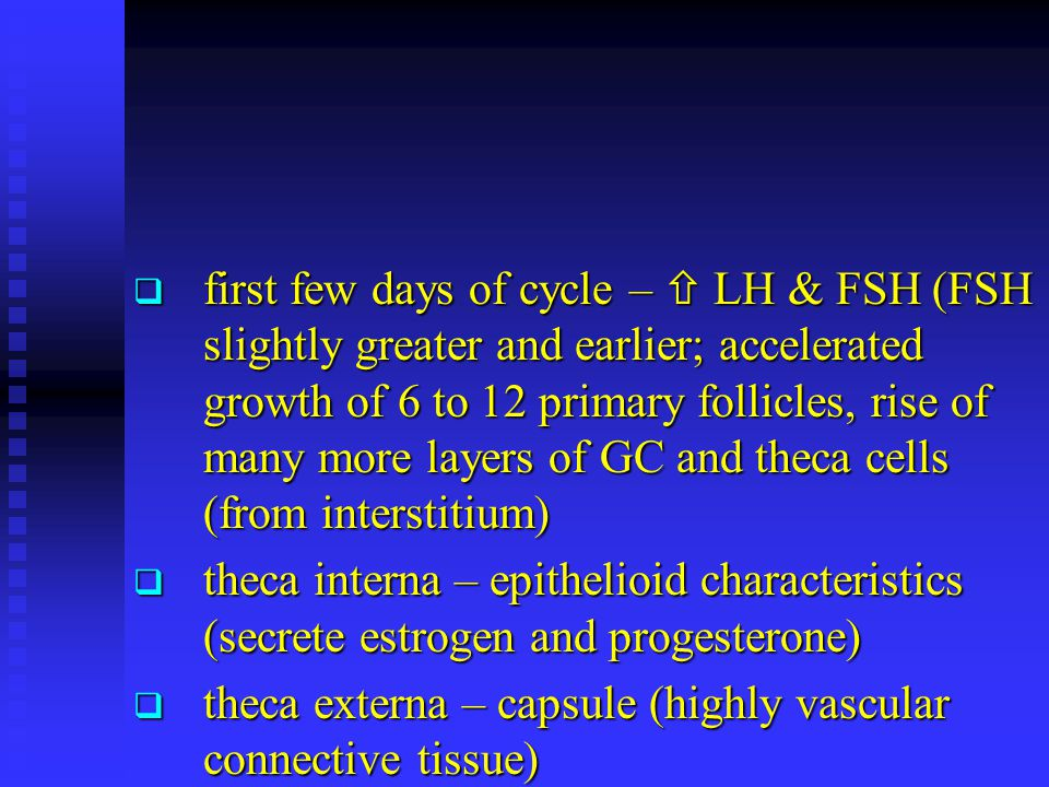 first few days of cycle –  LH & FSH (FSH slightly greater and earlier; accelerated growth of 6 to 12 primary follicles, rise of many more layers of GC and theca cells (from interstitium)