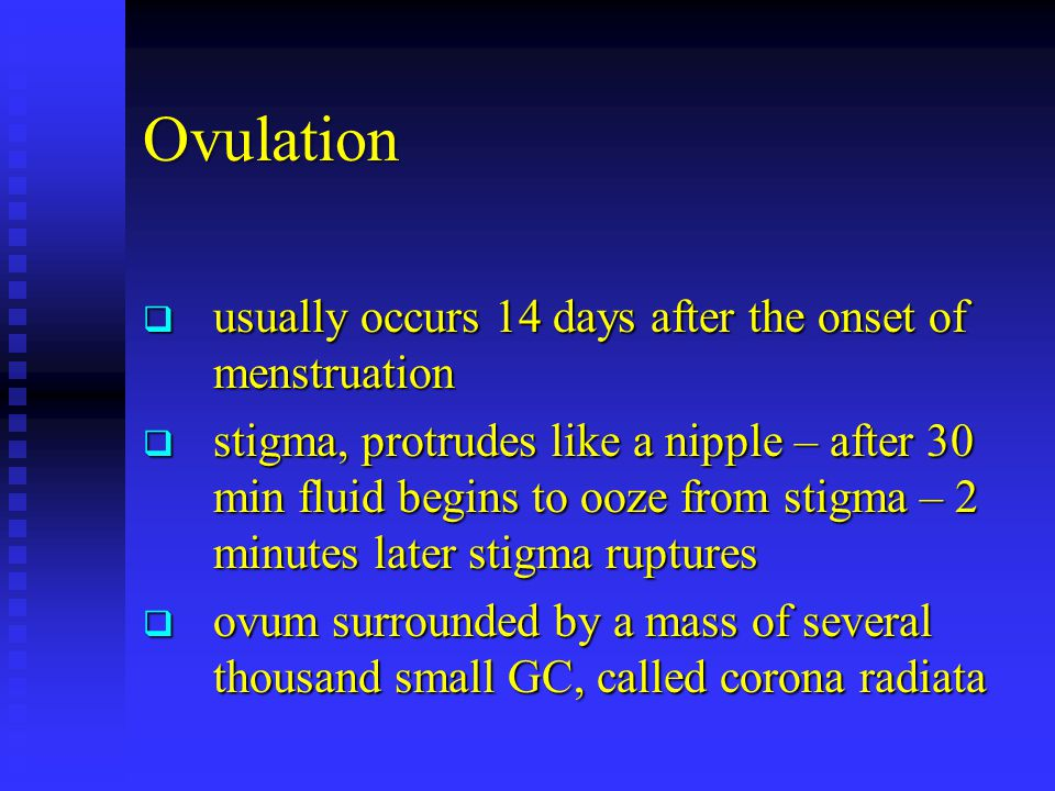 Ovulation usually occurs 14 days after the onset of menstruation