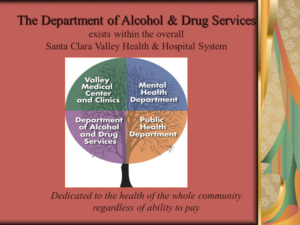 The Department of Alcohol & Drug Services