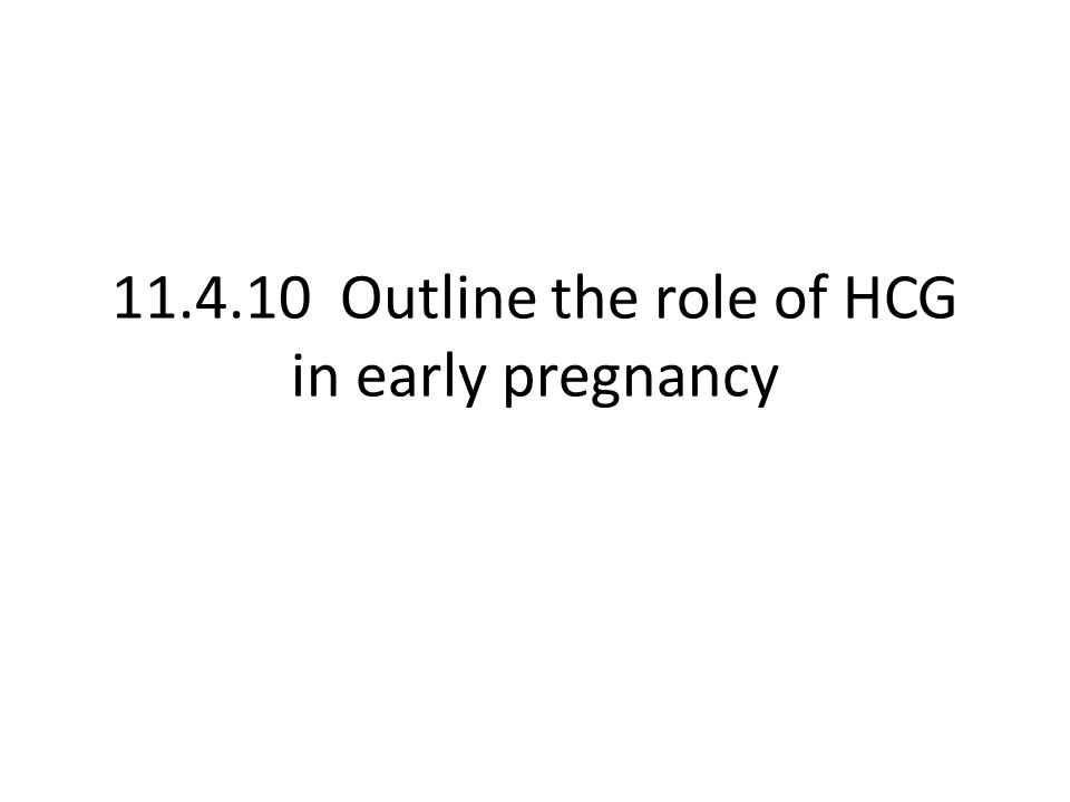 11.4.10 Outline the role of HCG in early pregnancy