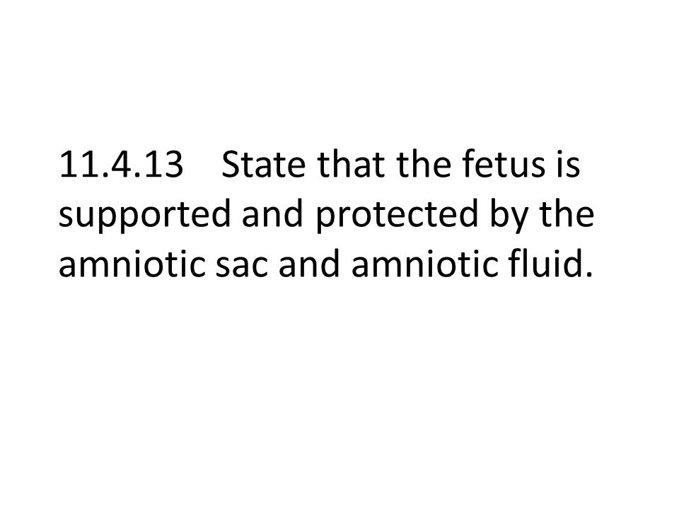 11.4.13 State that the fetus is supported and protected by the amniotic sac and amniotic fluid.