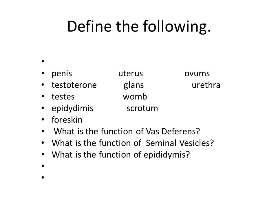 Define the following. penis uterus ovums testoterone glans urethra