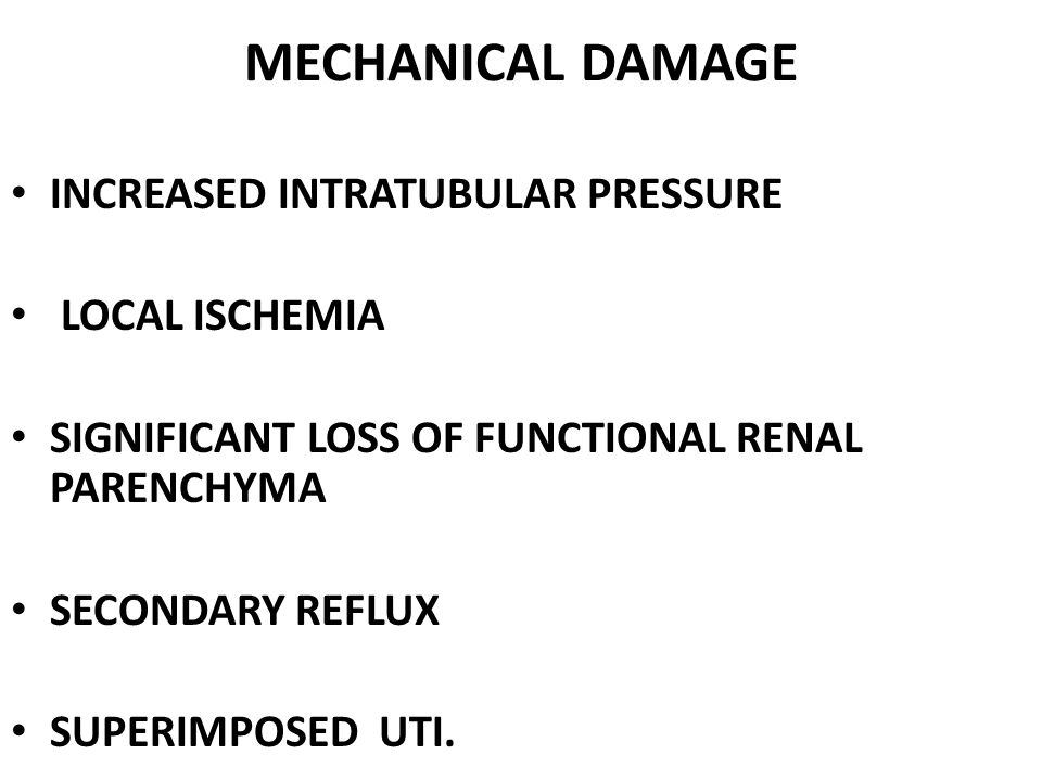 MECHANICAL DAMAGE INCREASED INTRATUBULAR PRESSURE LOCAL ISCHEMIA