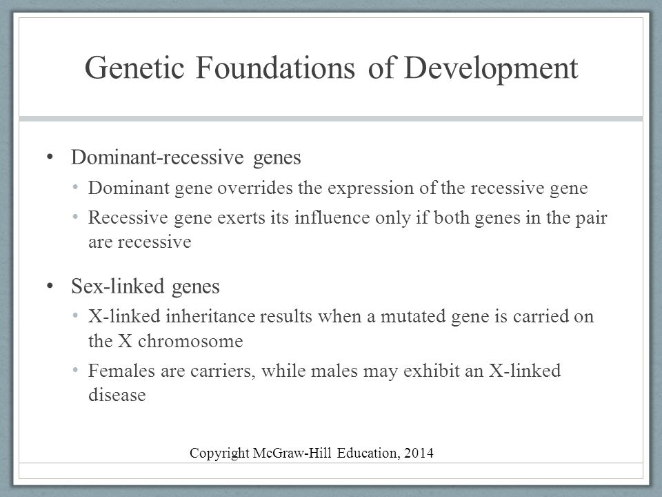 Genetic Foundations of Development