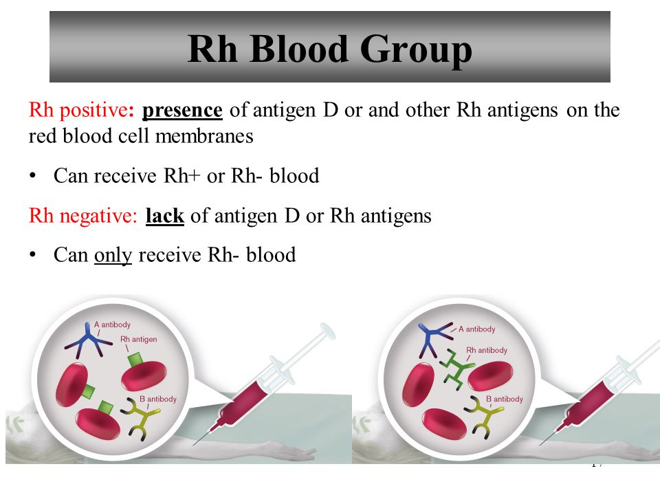 Rh Blood Group Rh positive: presence of antigen D or and other Rh antigens on the red blood cell membranes.