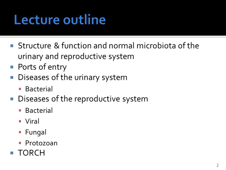 Lecture outline Structure & function and normal microbiota of the urinary and reproductive system. Ports of entry.