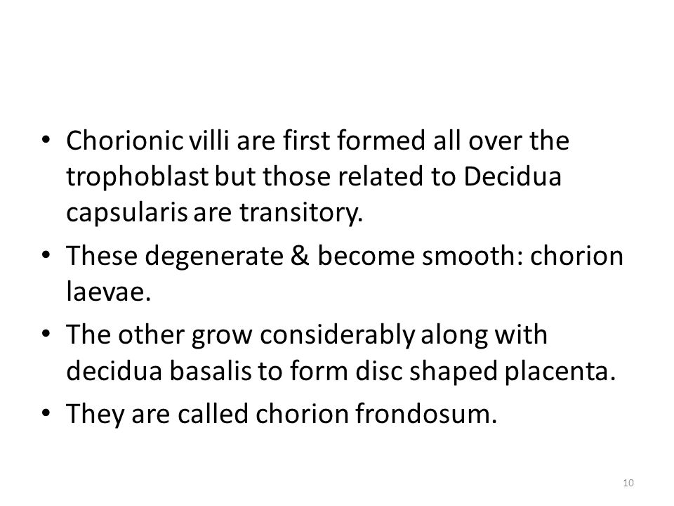 Chorionic villi are first formed all over the trophoblast but those related to Decidua capsularis are transitory.