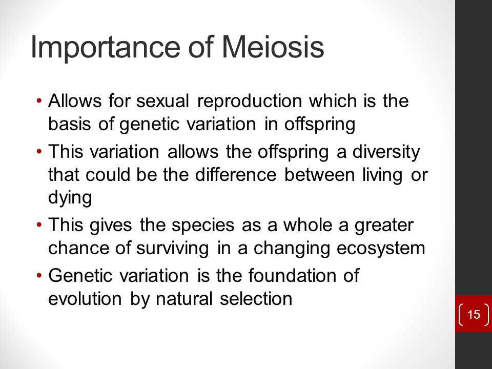 Importance of Meiosis Allows for sexual reproduction which is the basis of genetic variation in offspring.