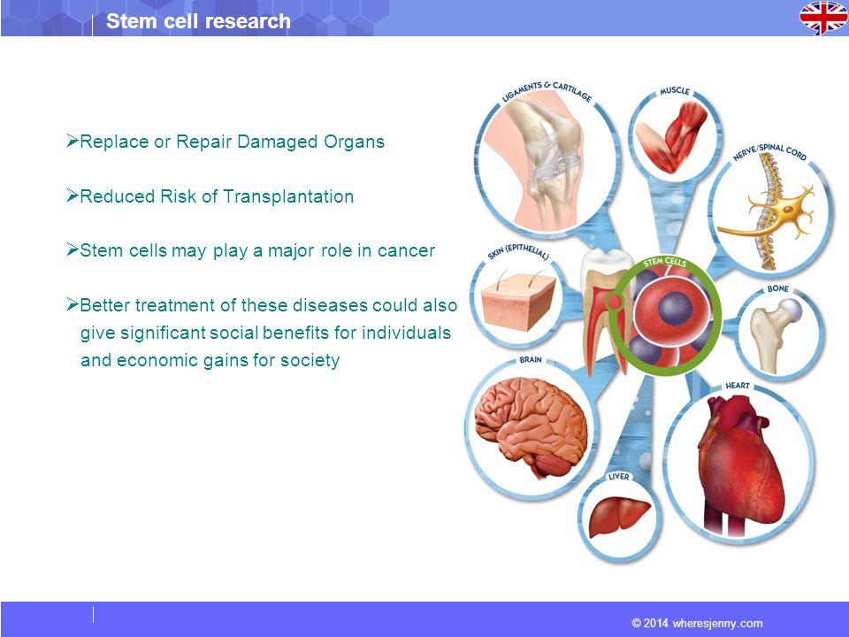 Replace or Repair Damaged Organs