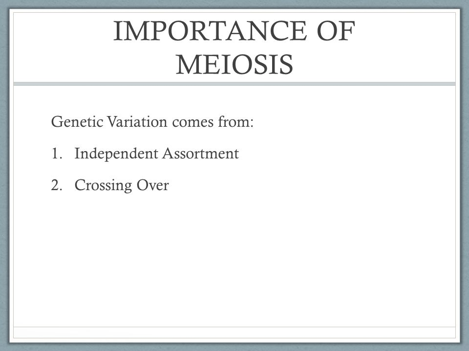IMPORTANCE OF MEIOSIS Genetic Variation comes from: