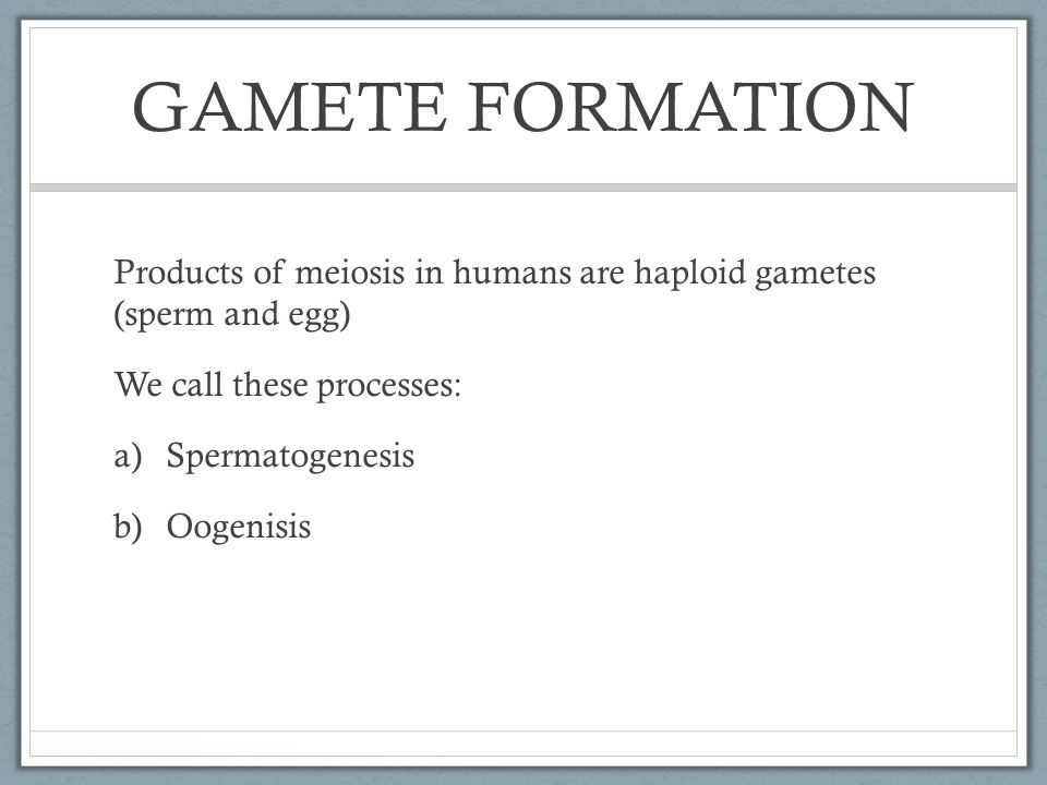 GAMETE FORMATION Products of meiosis in humans are haploid gametes (sperm and egg) We call these processes: