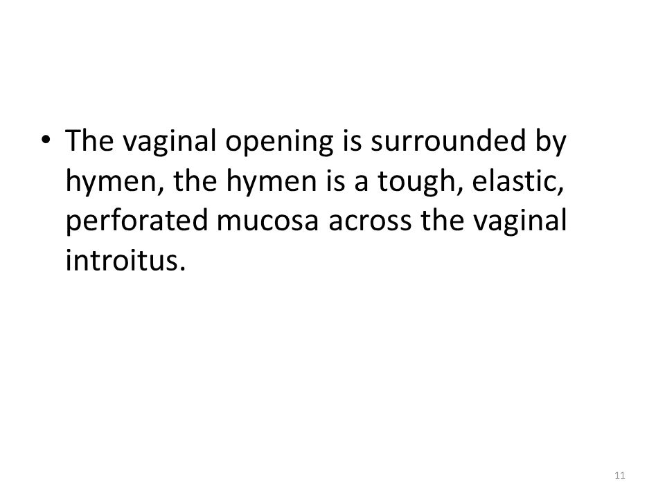 The vaginal opening is surrounded by hymen, the hymen is a tough, elastic, perforated mucosa across the vaginal introitus.