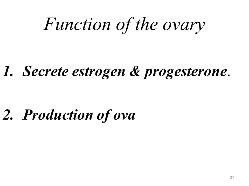Function of the ovary Secrete estrogen & progesterone.