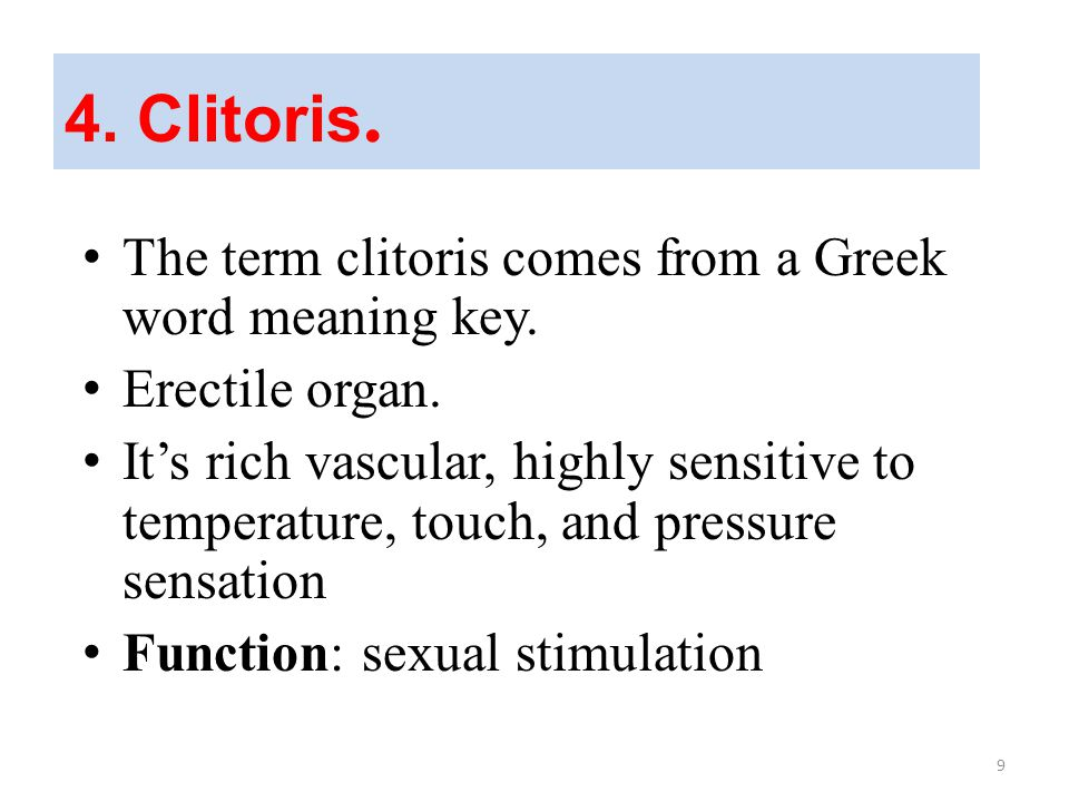 4. Clitoris. The term clitoris comes from a Greek word meaning key.