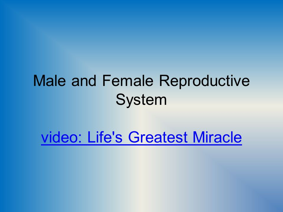 Male and Female Reproductive System video: Life s Greatest Miracle