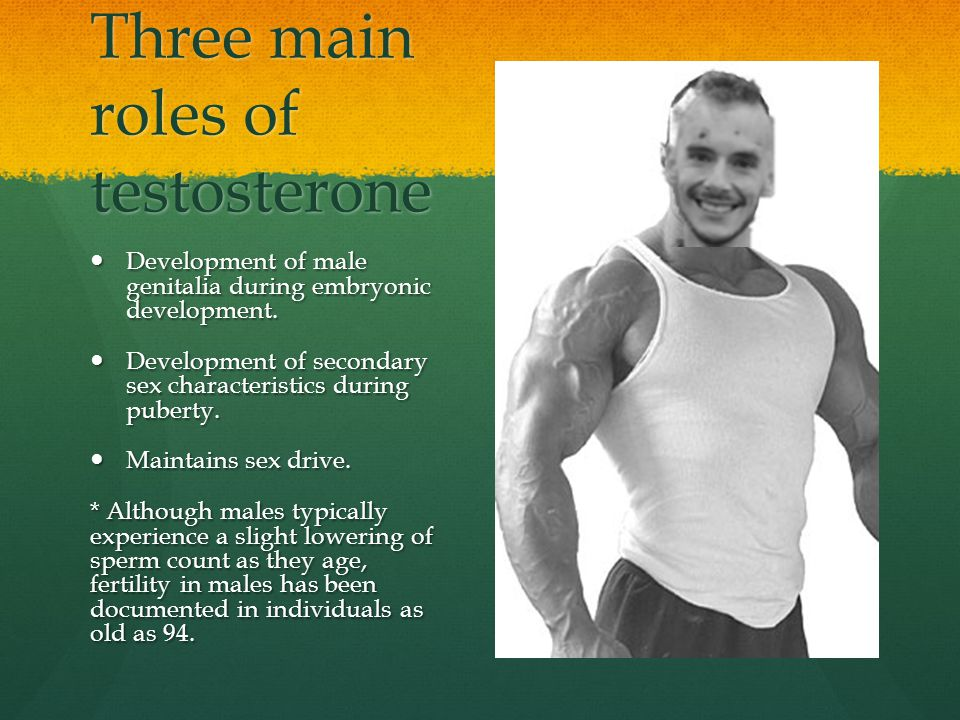 Three main roles of testosterone