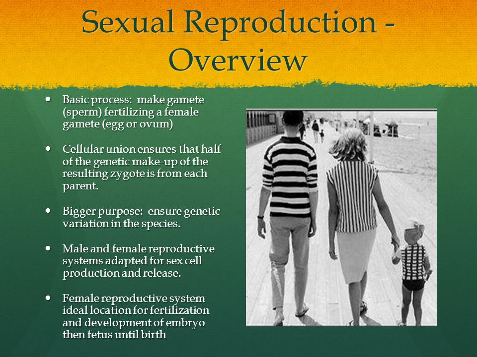Sexual Reproduction - Overview