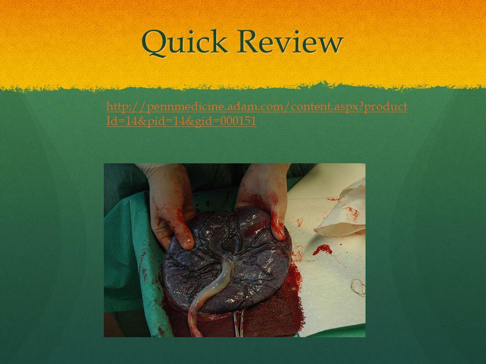 Quick Review http://pennmedicine.adam.com/content.aspx productId=14&pid=14&gid=000151