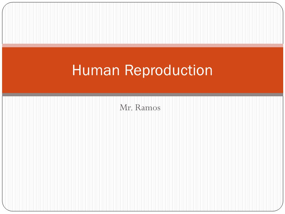 Human Reproduction Mr. Ramos