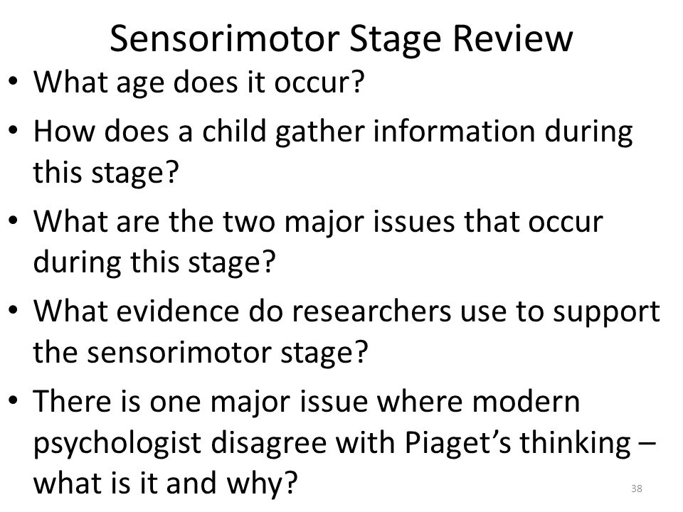 Sensorimotor Stage Review