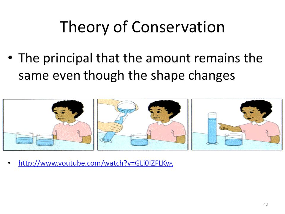 Theory of Conservation