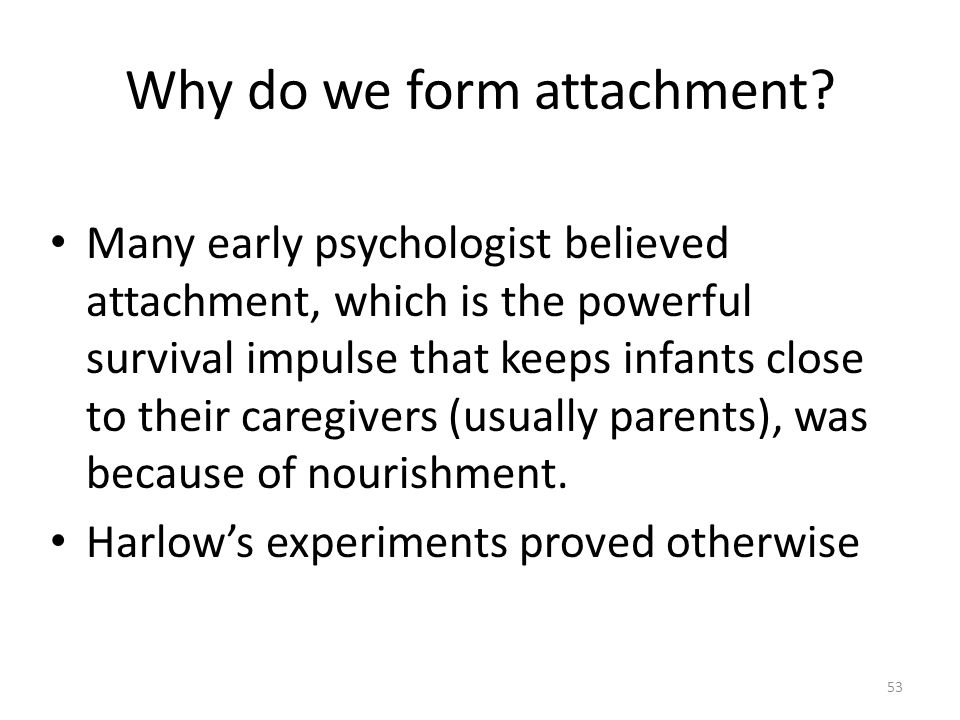 Why do we form attachment