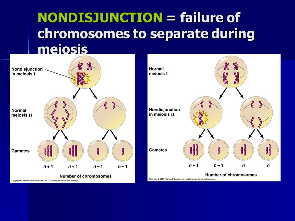 NONDISJUNCTION = failure of chromosomes to separate during meiosis