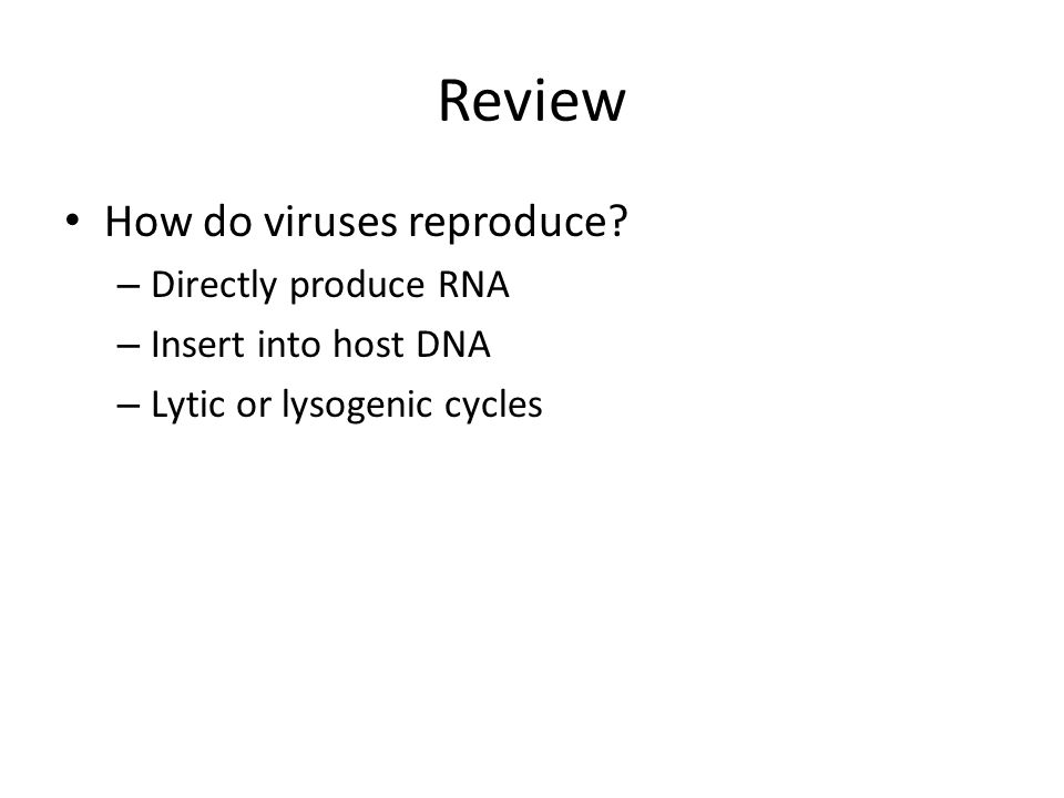 Review How do viruses reproduce Directly produce RNA
