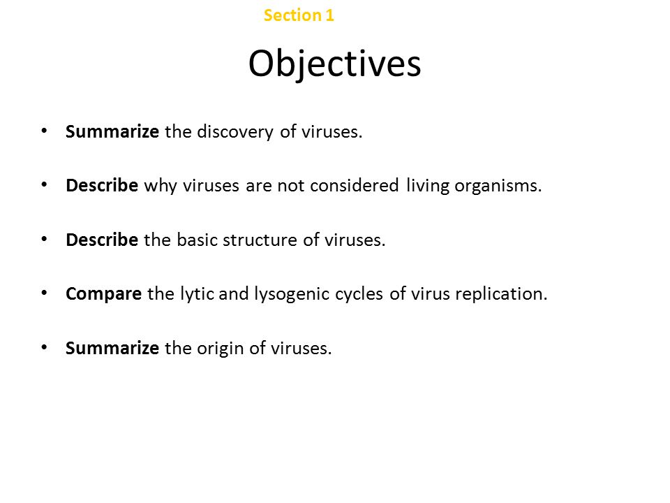 Objectives Chapter 24 Summarize the discovery of viruses.