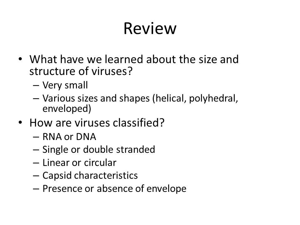 Review What have we learned about the size and structure of viruses