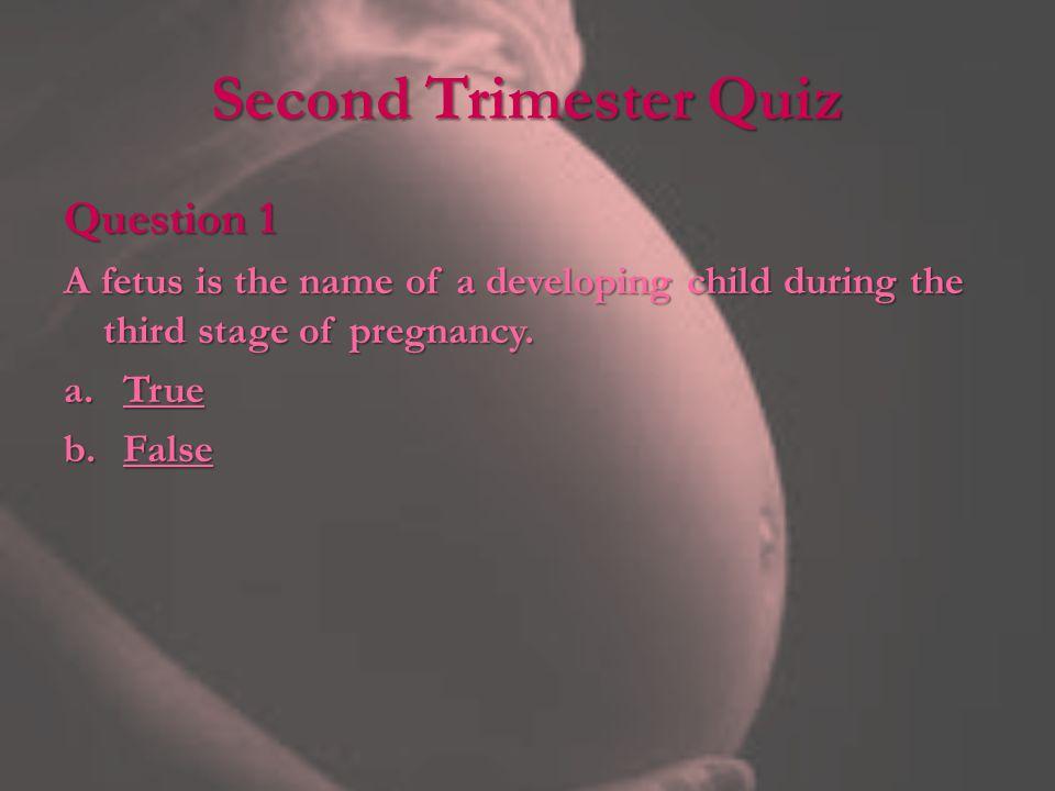 Second Trimester Quiz Question 1