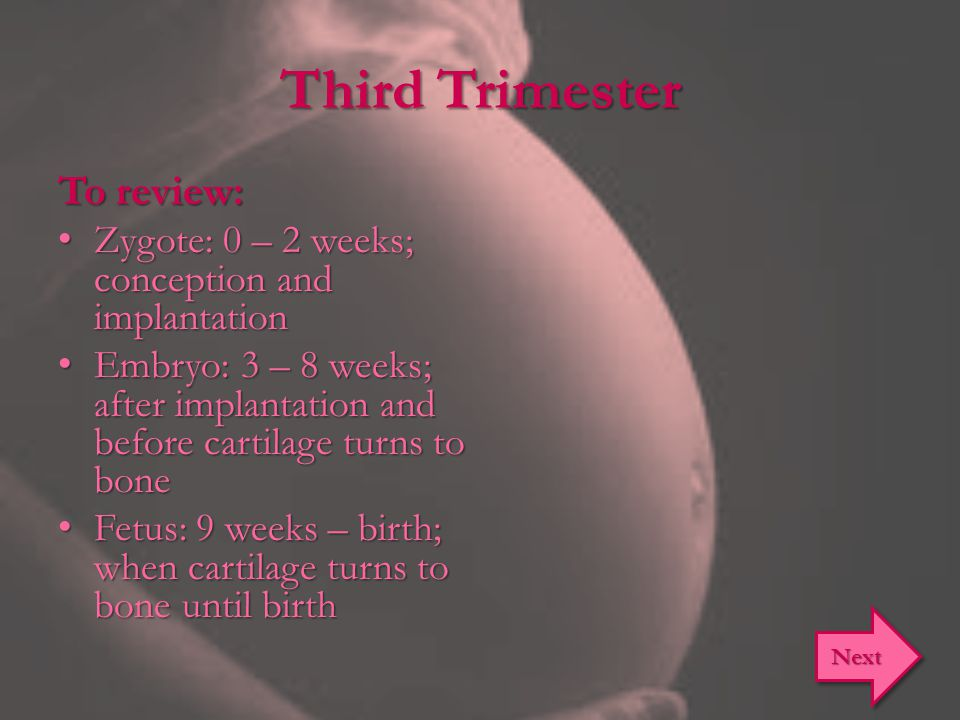 Third Trimester To review: