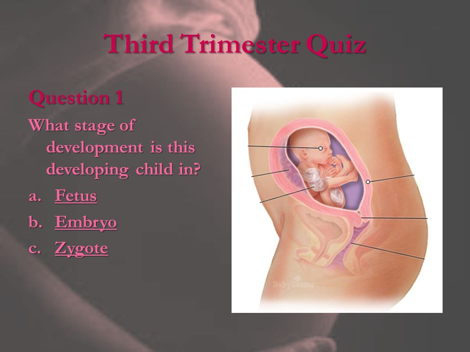 Third Trimester Quiz Question 1