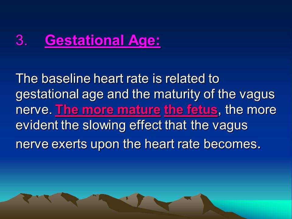 3. Gestational Age: