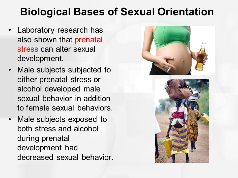 Biological Bases of Sexual Orientation