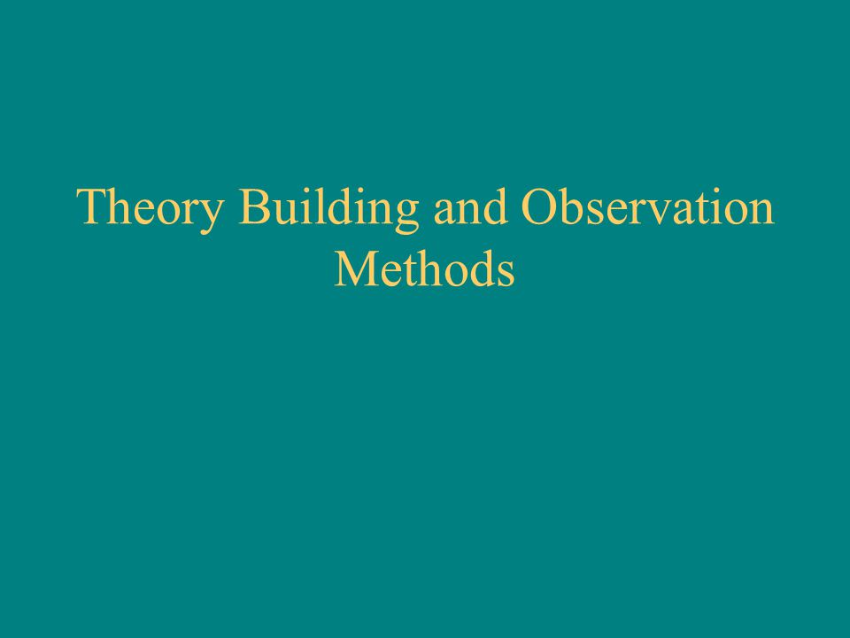 Theory Building and Observation Methods