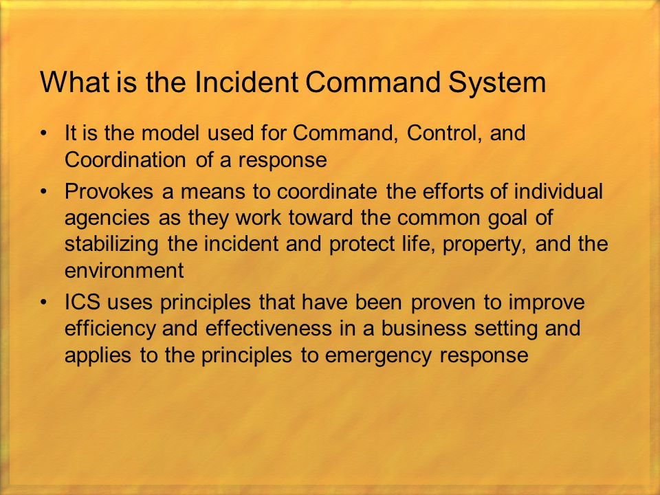 What is the Incident Command System