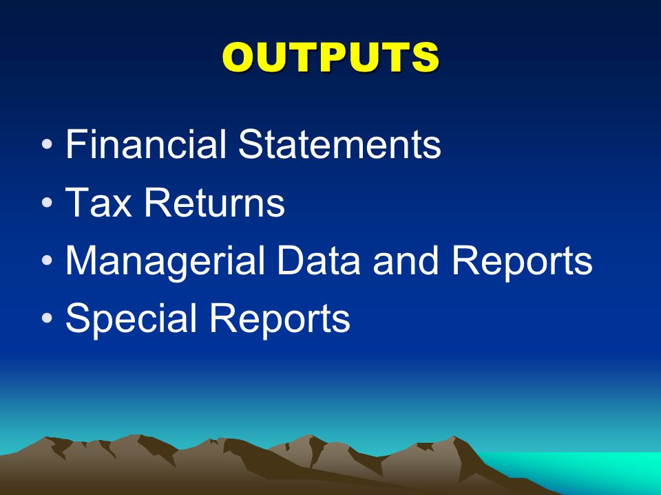 OUTPUTS Financial Statements Tax Returns Managerial Data and Reports Special Reports